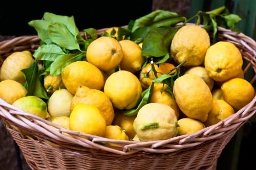 lemon kissing ball, how to make a kissing ball