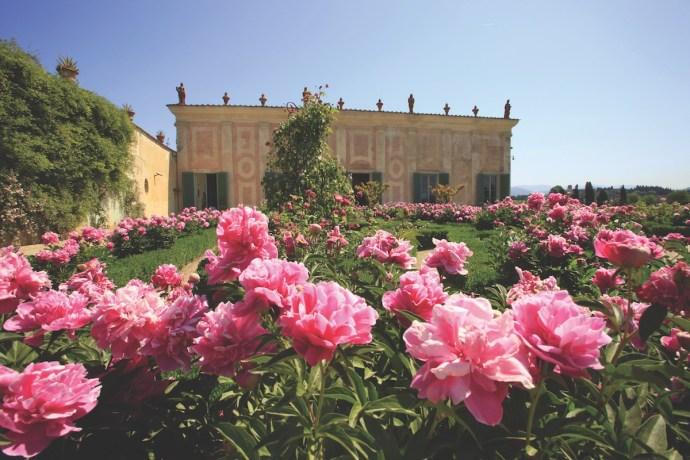 BBT90T Boboli Gardens, Florence,Tuscany,Italy