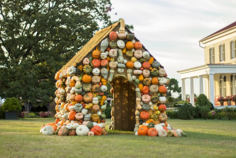 ornamental pumpkins, pumpkin house