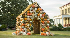 ornamental pumpkins, pumpkin house