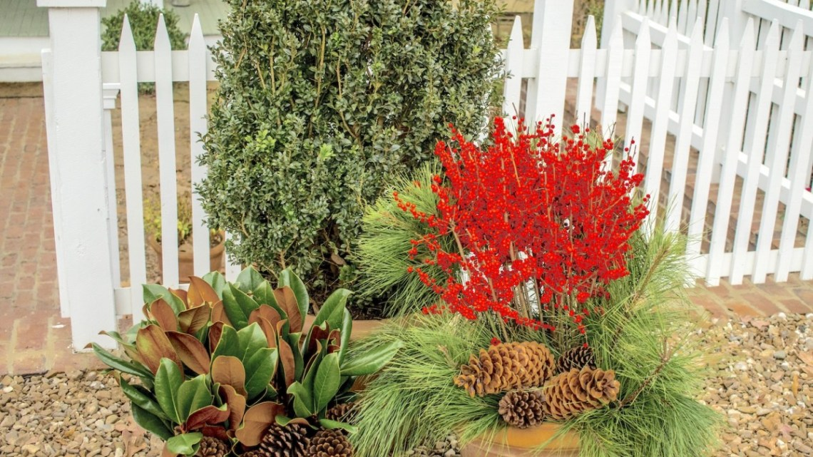 easy evergreen containers, p. allen smith