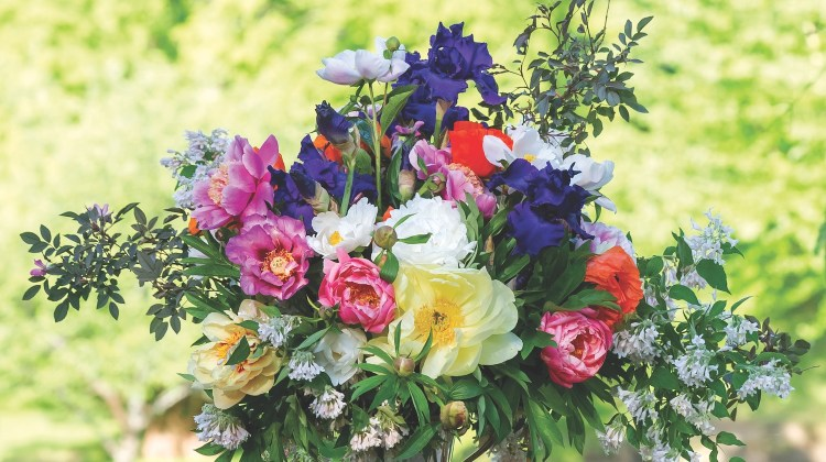 Peony Arrangements, peony flower arrangements
