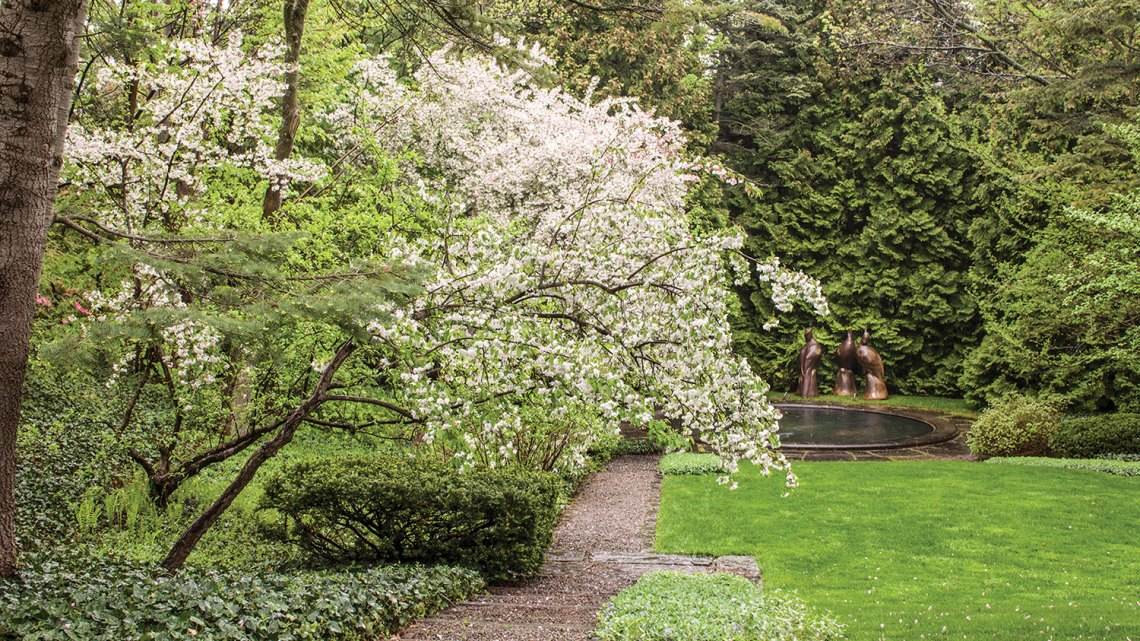 A small white flowering tree bows over a path leading to a pond at Melissa McGrain's estate, which was designed by Fletcher Steele, in Pittsburgh, New York