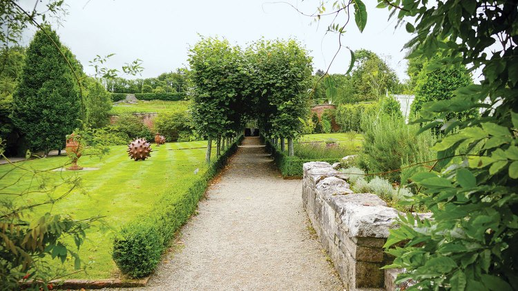 Photo of a hornbeam tunnel dividing an expanse of lawn at Dromoland Castle in Ireland.