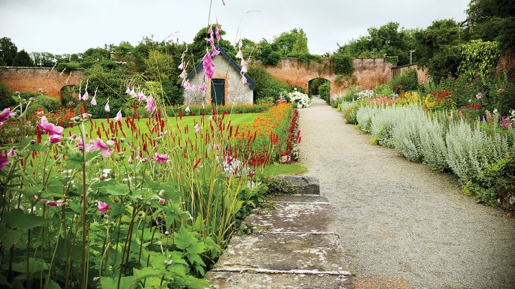 A gravel path bordered by dense, colorful flowers on both sides leads to an arched exit in the greenery-draped, tall, aged brick garden wall at Dromoland Castle in Ireland. To the left of the path is a lush green lawn.