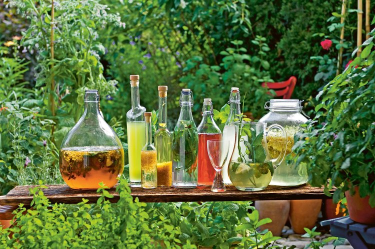 A table in the middle of a lush green garden displays an assortment mocktails in unique glass containers