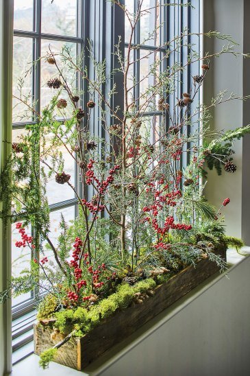 In a bright windowsill, an airy, tall arrangement of ilex berries, pine, and other branches of greenery spring from a rustic long wood box that is bedded with moss.