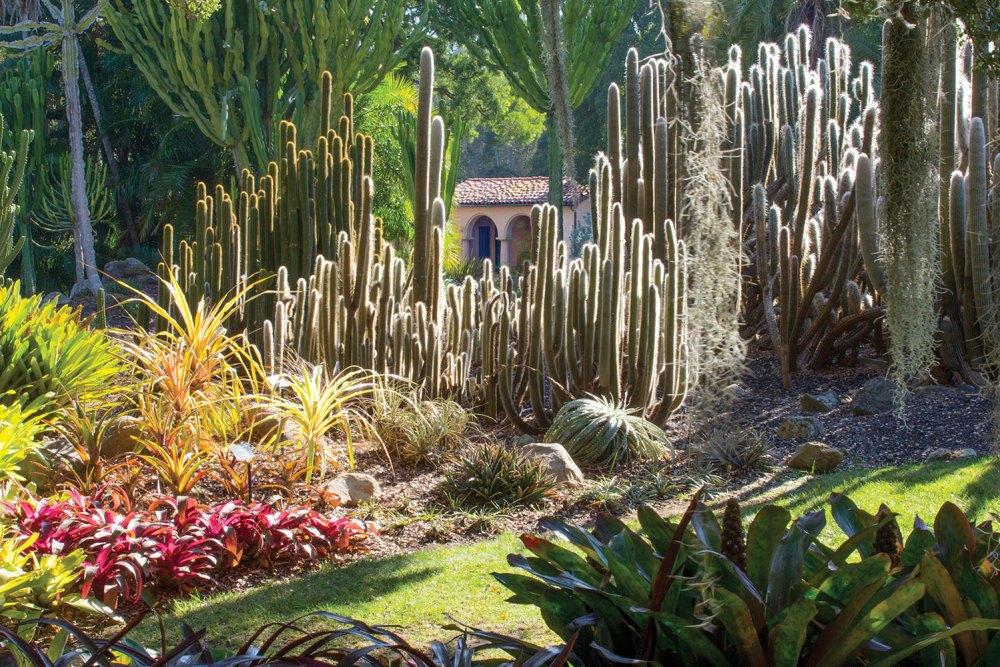 Things to do in Santa Barbara, garden