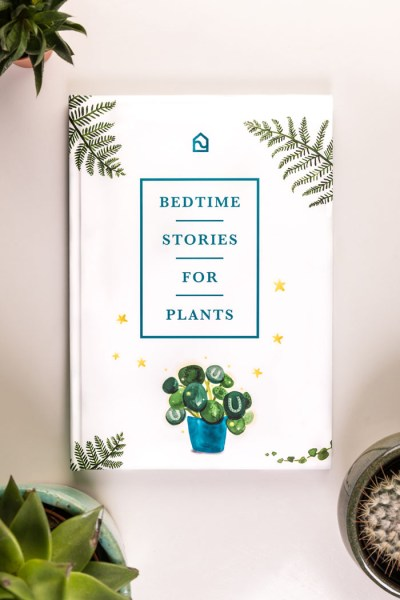 Book cover for Bedtime Stories for Plants
