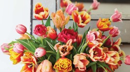 A simple tulip arrangement by floral designer Mimi Brown in a tole cachepot