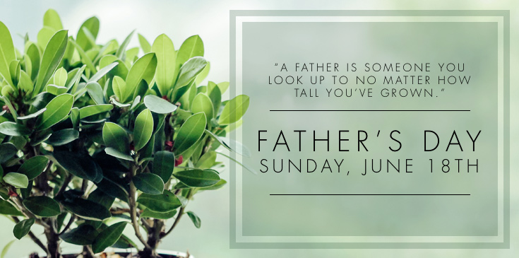 celebrating father s day