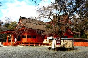 【一個人旅行】富士五湖Day4 富士淺間大社參拜+直衝東北會津若松看雪囉☃