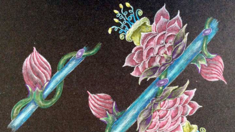 The Story of a Flower - color drawing of branch flowers