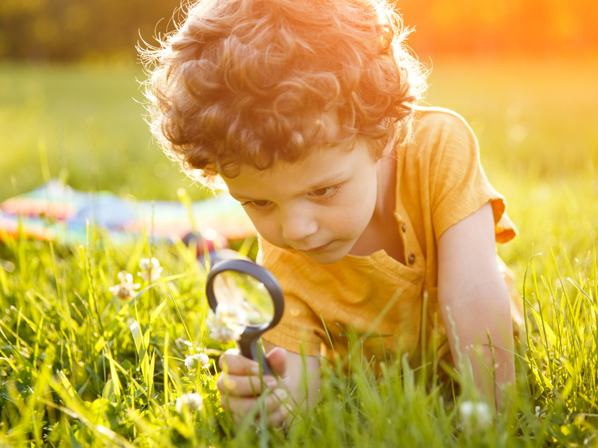 Young curly haired boy studying flower looking through magnifier lying on green grass.