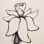 Flowerosity sketch #63