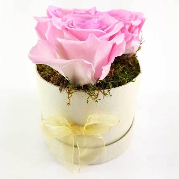 Ewige Rosen 3er Rosa