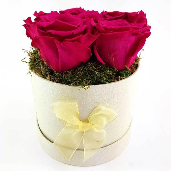 Ewige Rosen 6er Pink2