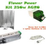 Kit AGRO 250w