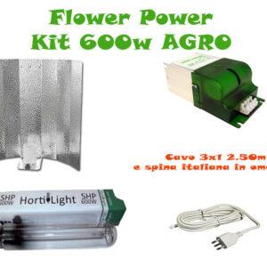Kit AGRO 600W