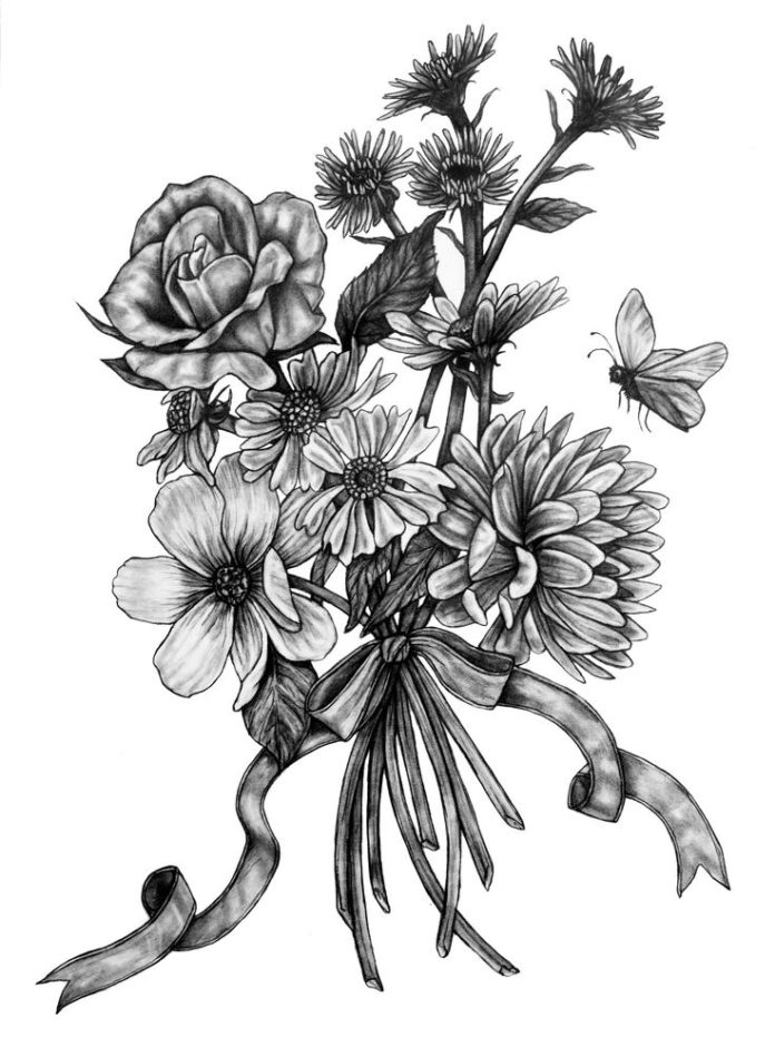 Pencil Drawings Of Flowers And Butterflies : pencil, drawings, flowers, butterflies, Flowers, Drawings, Inspiration, Original, Butterfly, Pencil, Drawing, Pollinators, Flowers.tn, Leading, Magazine,, Daily, Beautiful, Occasions