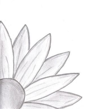drawing simple nature doodle drawings flowers inspiration selection tn