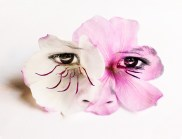 Tibouchina flower and face