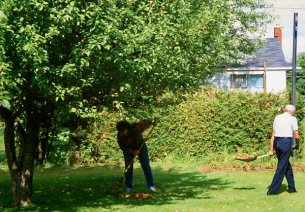 1996 -- a tall, robust tree with lots of apples. (That's an aunt and my grandfather doing yard cleanup.)