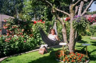 2004, and the tree is starting to suffer. That's me in the hammock.