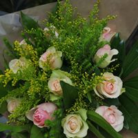 Rose bunch #2.1, 6roses R300, 12 roses R360, 20 roses R550 colours available Red, White, Yellow