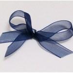 Navy organza ribbon