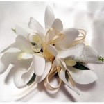 Orchids with gold organza ribbon.