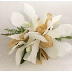 White orchid corsage with dark gold organza ribbon.