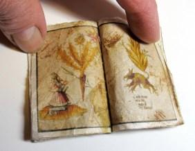 Harry Potter: botanical book