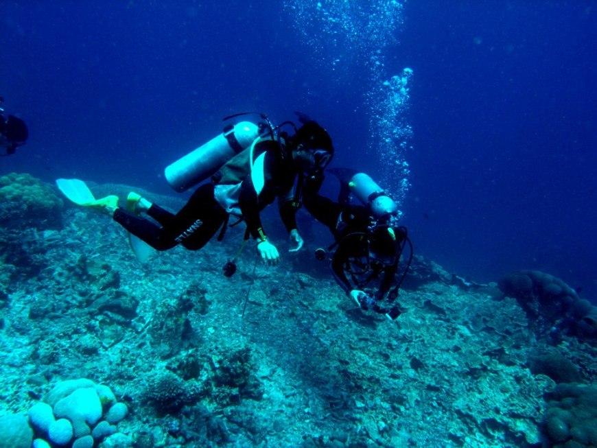 Diving Bunaken