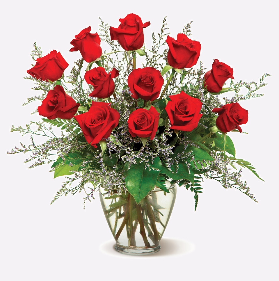 romantic roses flowers naturally