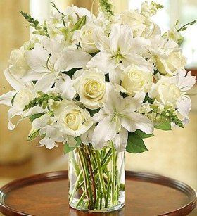 1-800-Flowers – Classic All-White Arrangement – Large