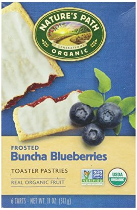 Nature's Path Frosted Toaster Pastry – Blueberry – 11 oz – 6 ct