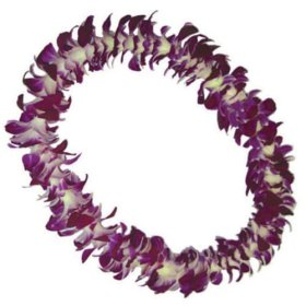 Single Strand Purple Lei 12-pack