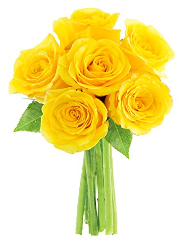 Bouquet of Long Stemmed Yellow Roses (Half Dozen) – Without Vase