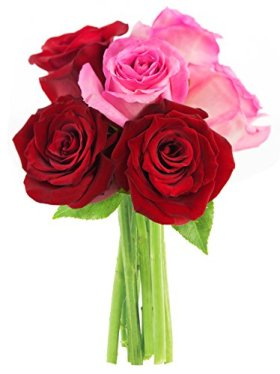 Bouquet of Long Stemmed Red and Pink Roses (Half Dozen) – Without Vase