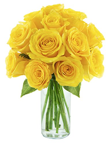 Yellow Roses of Texas (One Dozen long-stemmed roses) – With Vase