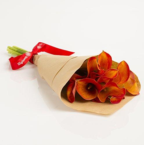 Orange Mini Calla Lilies Hand-tied Bouquet- No Vase