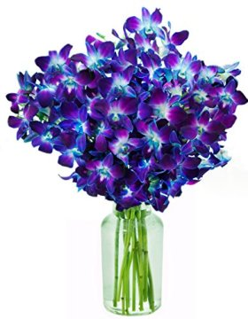 Blue Orchid Fresh Flower Bouquet (20 Stems) – With Vase