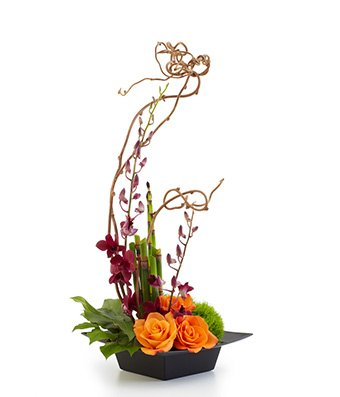 Thinking Of You – Theshopstation Same Day Flower Delivery Fresh Flowers Online Orchids – Wedding Flowers – Birthday Flowers – Send Flowers – Floral Arrangements – Orchids Bouquets