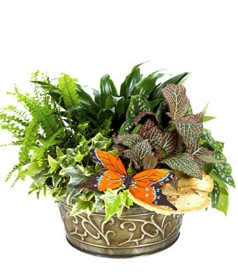Scent Worldwide – Eshopclub Same Day Flower Delivery – Fresh Flowers Plants – Wedding Flowers Bouquets – Birthday Flowers – Send Flowers – Flower Arrangements