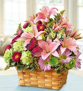 1-800-Flowers – Spring Inspiration – Large