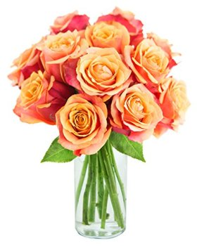Long-stemmed Orange Roses (One Dozen) – With Vase