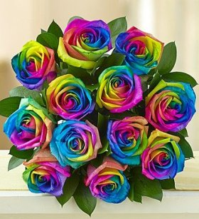 1-800-Flowers – Kaleidoscope Roses – 12 Stems Bouquet Only