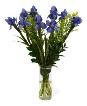 Wild- Love Iris Bouquet (10 stems) – With Vase