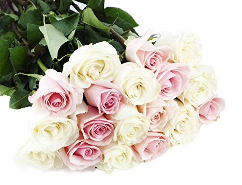 Bouquet of Long Stemmed Pink and White Roses (Dozen and a Half) – With Vase
